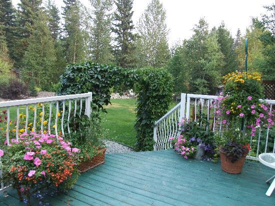 Arbor Bed and Breakfast: garden