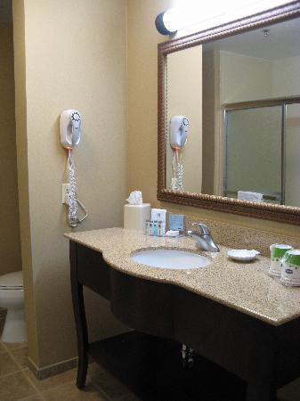 Hampton Inn Gallipolis: Bathroom