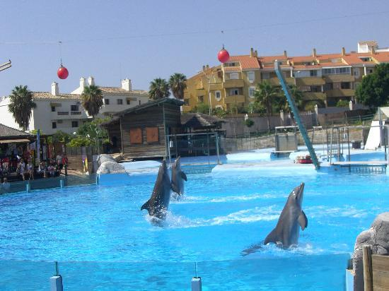 Holiday Village: Selwo Marina, get time even if slightly expensive
