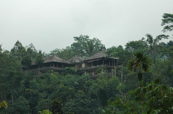 Villa Wastra: The surroundings