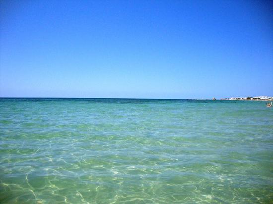 Tenuta Specolizzi: Il mare dove eravamo