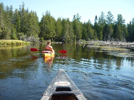 Borchers Au Sable Bed and Breakfast: Canoeing on the Au Sable river
