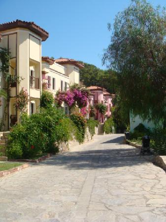 Caria Holiday Resort: street