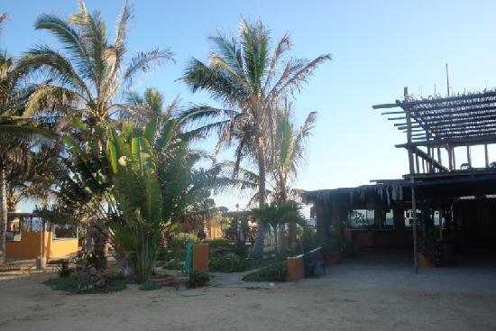 San Pedrito Surf Hotel: L'ENTRATA