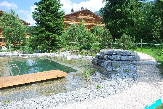 Hotel Hornberg: Garden
