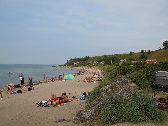 Sweden: Island of Ven beach