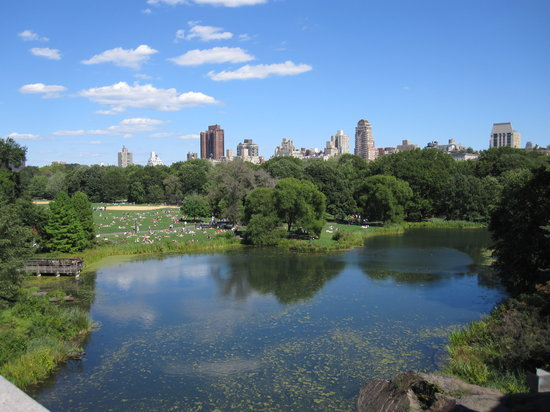 Central Park Tours: The views are stunning!