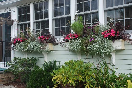 Stonington, CT: Flowers at the entrance
