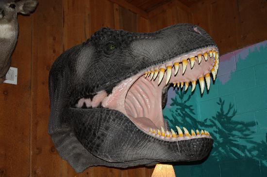 Pistol Pete's: T-Rex Trophy