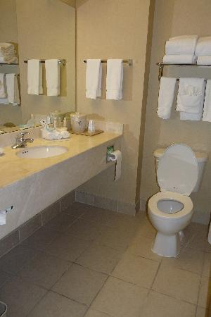هوليداي إن إكسبريس هوتل آند سويتس: Bathroom