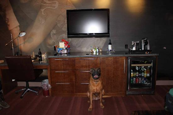 Iron Horse Hotel: Our dog in front of bar area in room