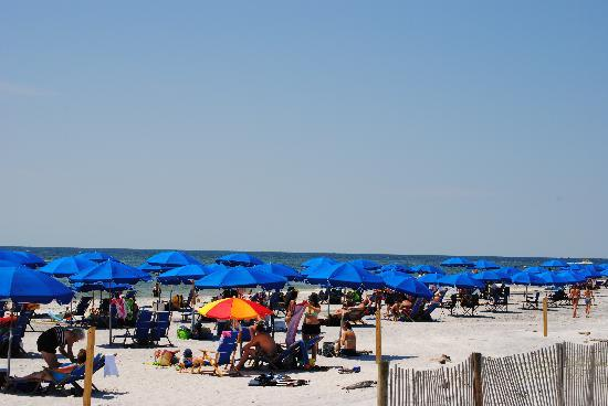 Gulfport, MS: beach