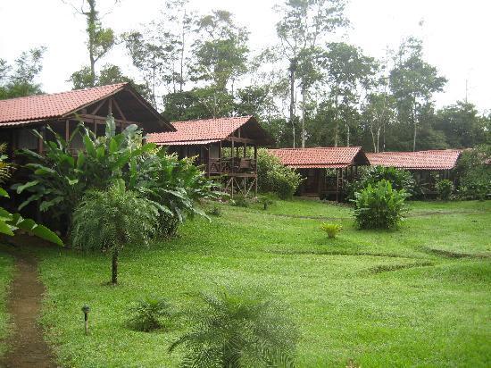 La Anita Rainforest Ranch: the cabins