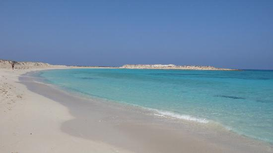 Jaz Almaza Beach Resort: Beach View
