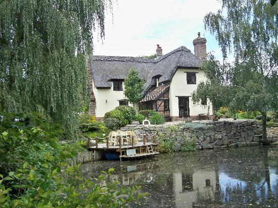 Kingfisher Retreat: Wonderful thatched cottage, built by the owners!!