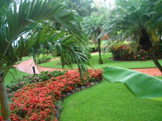 Melia Puerto Vallarta All Inclusive: Jardines Padrisimos!!!