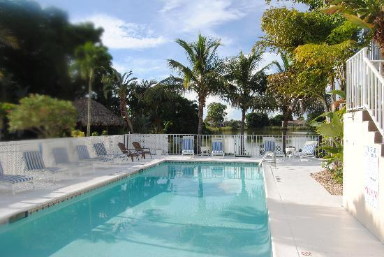 Marco Island Lakeside Inn: Lovely Pool