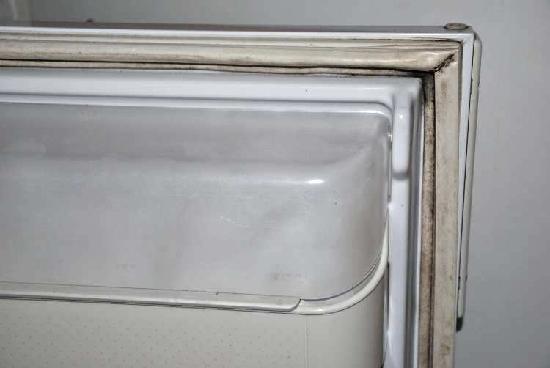 Città di Castello, Italia: Il frigorifero/Fridge