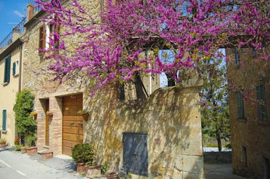 La casa di Lucia: facciata della casa