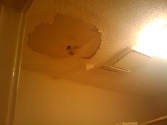 Motel 6 Brinkley, AR: Mold on the ceilings