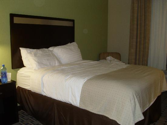 Holiday Inn Houston - Webster: COMFY bed!