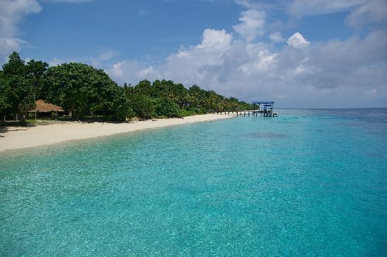 The Reef Dive Resort : Mataking