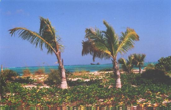 Ocean Beach Hotel Condominiums : Always stunning