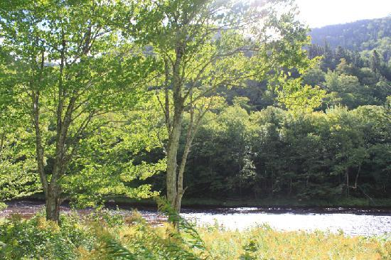 Big Intervale Fishing Lodge : the river near the cabin