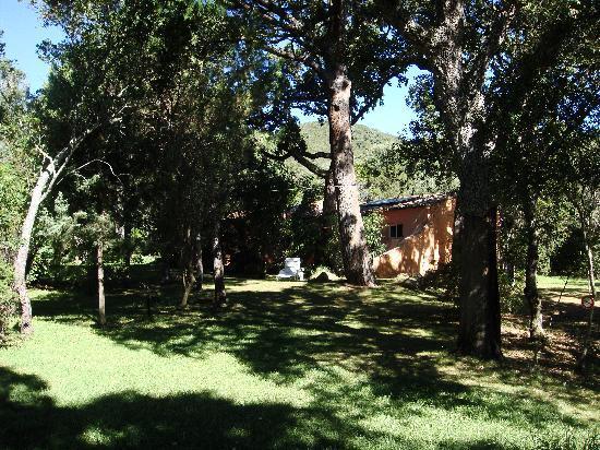 Résidence les Lièges de Palombaggia : Les résidences T3