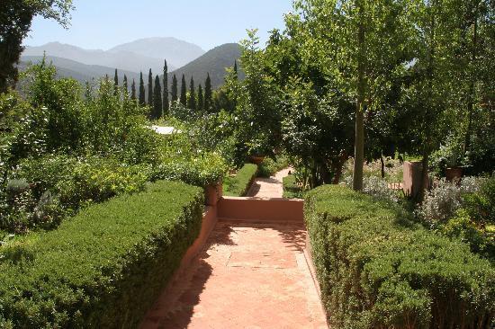 Kasbah Tamadot : Atlas mountain in distance