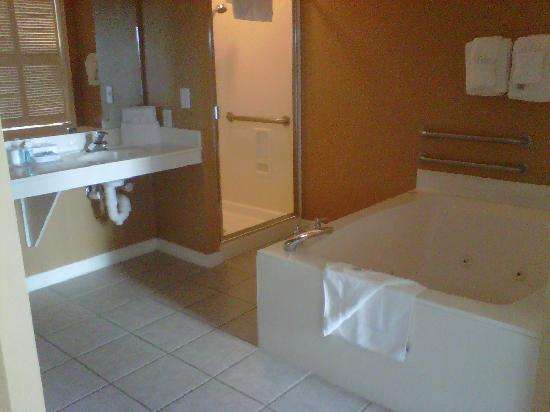 Wyndham Vacation Resorts Majestic Sun: Master Bathroom
