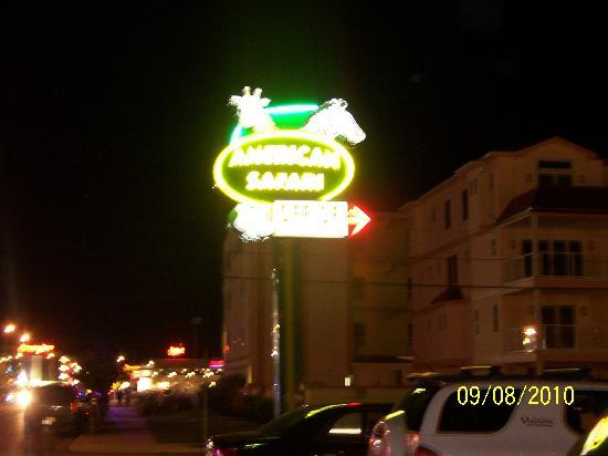 American Safari Motel: sign