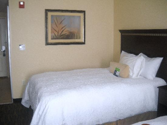 Hampton Inn Roanoke Rapids: Comfortable Bed!