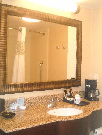 Hampton Inn Roanoke Rapids: Bathroom
