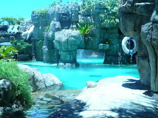 Ocean Tours Tripadvisor