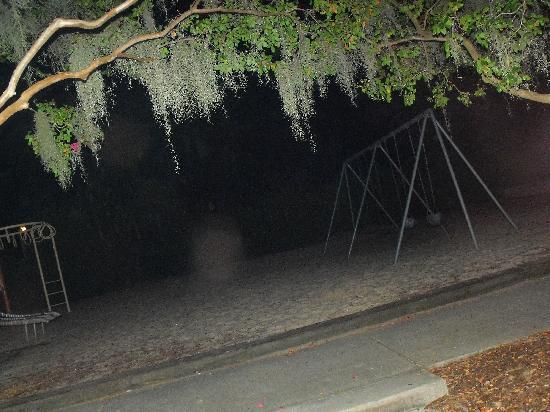 Hearse Ghost Tours: The haunted playground