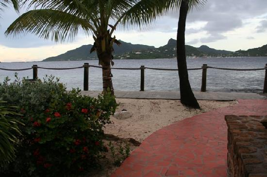 Palm Island Resort & Spa: Veiw from our front door