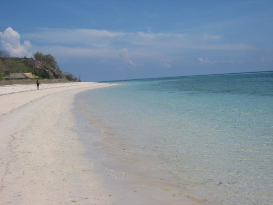 Alor Divers Eco Resort : la plage