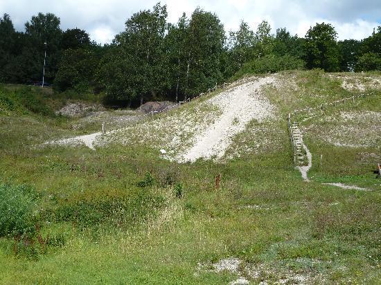 Skalbanksmuseet: Ein Hügel aus Muschelschalen