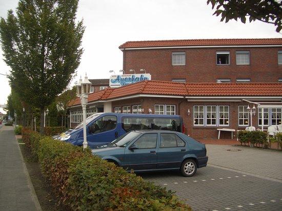 Sande, Tyskland: PKW-Parkplatz vor dem Haus