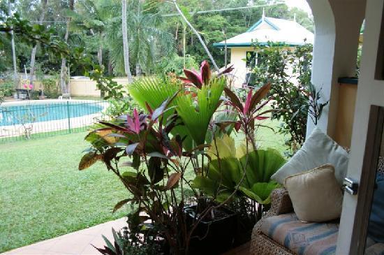 Yorkeys Knob, Australia: View from the terrace to the garden