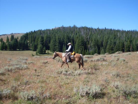 The Hideout Lodge & Guest Ranch : passeggiate a cavallo