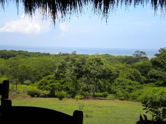 Las Plumerias Lodge and Surf: La vista