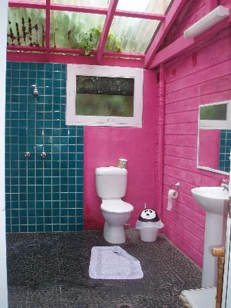 Dolphins Beach House: Baño común