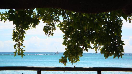 Palm Beach Cafe: Vue de la terrasse 1