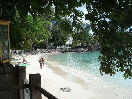 Palm Beach Cafe: Vue de la terrasse 2