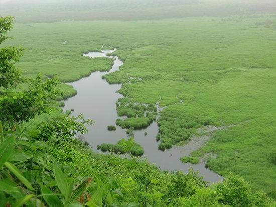 Kottaro Swamp Observatory