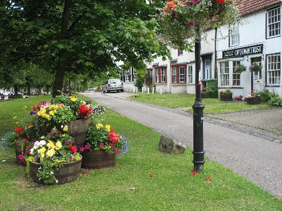 Hardwick Arms Hotel: Sedgefield in bloom