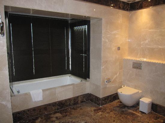 Hotel Fuerte Estepona: Ducha