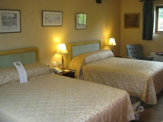 Cabra Castle Hotel: Courtyard Room